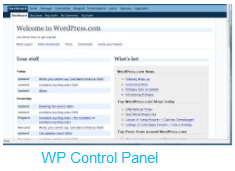 wp_control.png