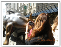 bulls-lady