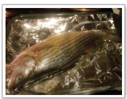 broiled-fish