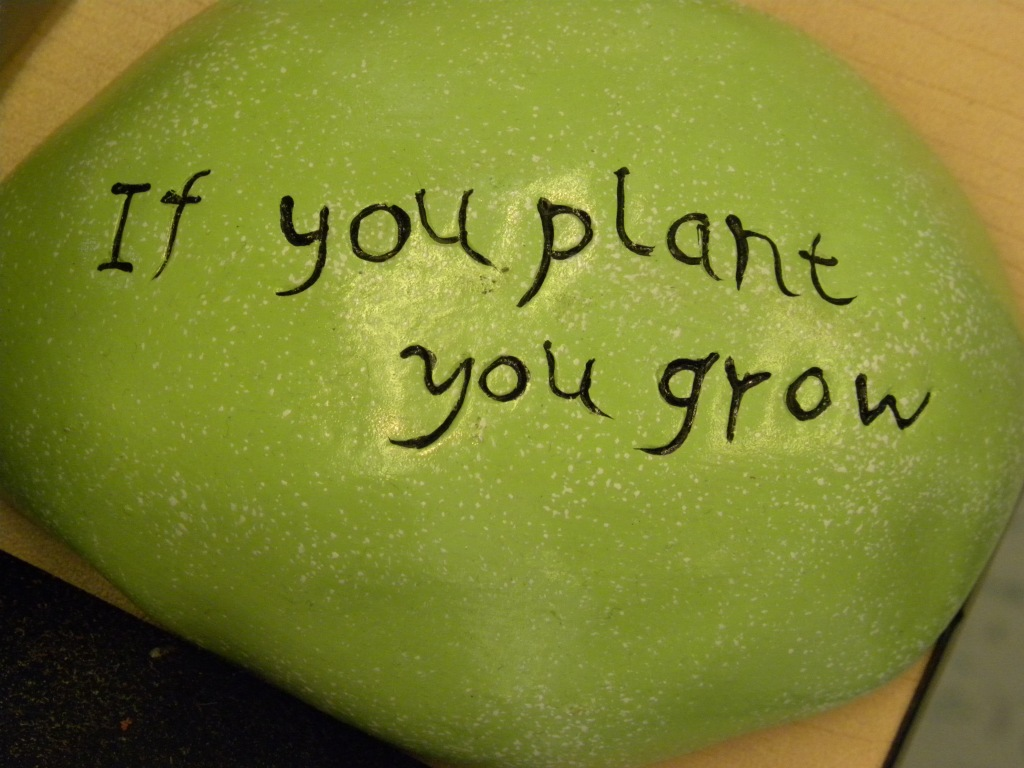 If you plant you grow