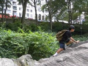 central-park-rock-c1