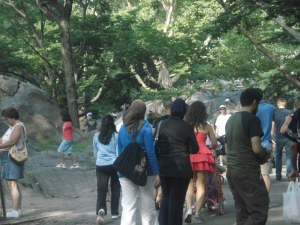 central-park-walk15