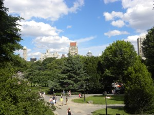 central-park-wal2