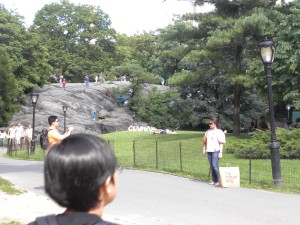 central-park-wal1