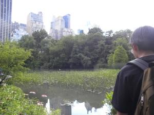 central-park-rest2
