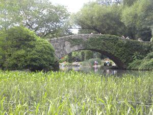 central-park-rest6