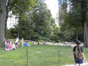 central-park-lawn1