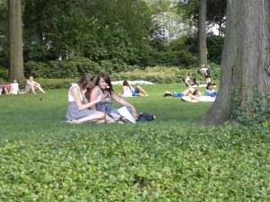 central-park-lawn2