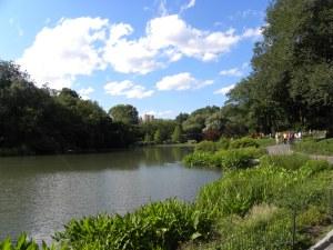central-park-rest7