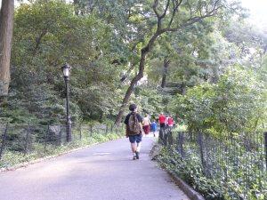 central-park-walk9