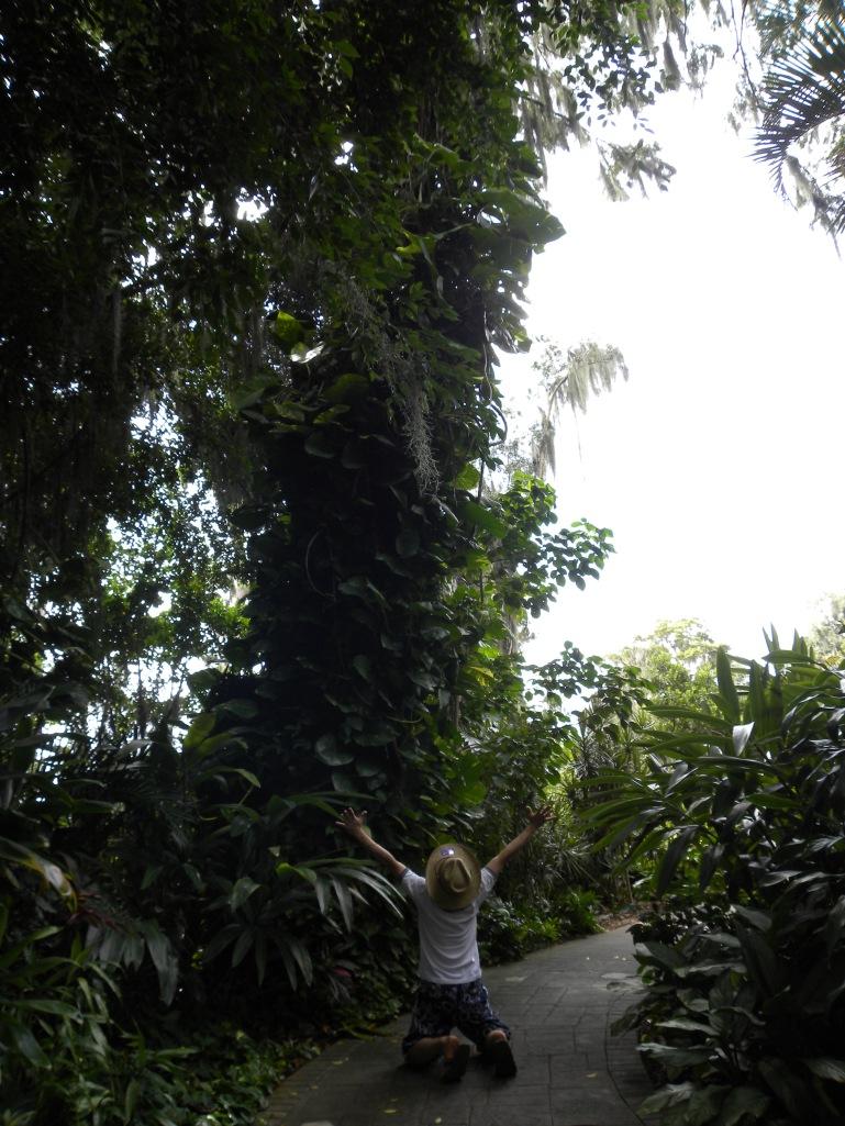luhod-luhod-pasayloa